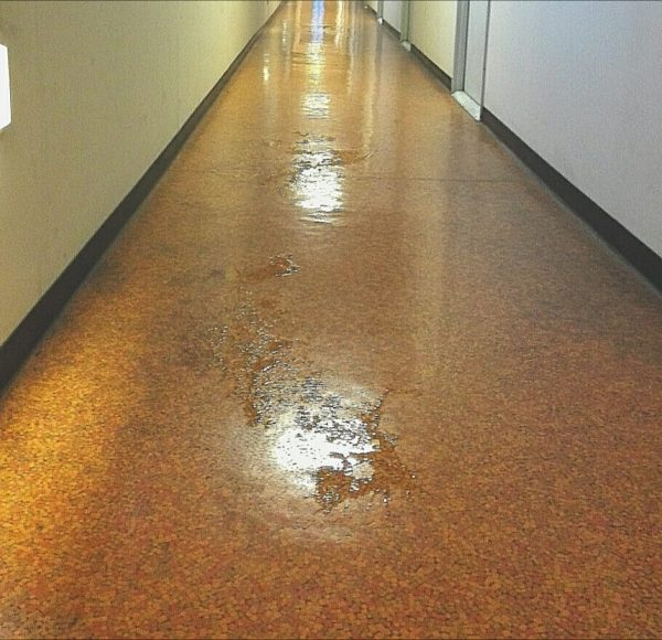 寮の廊下が雨で水浸しになってたって話
