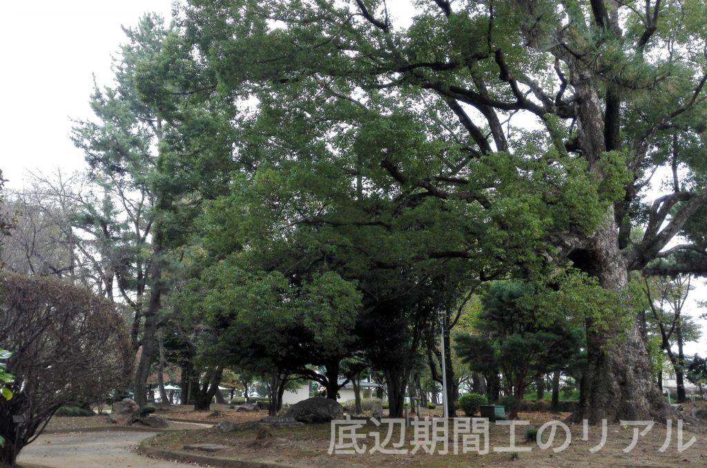 大泉町役場庭園